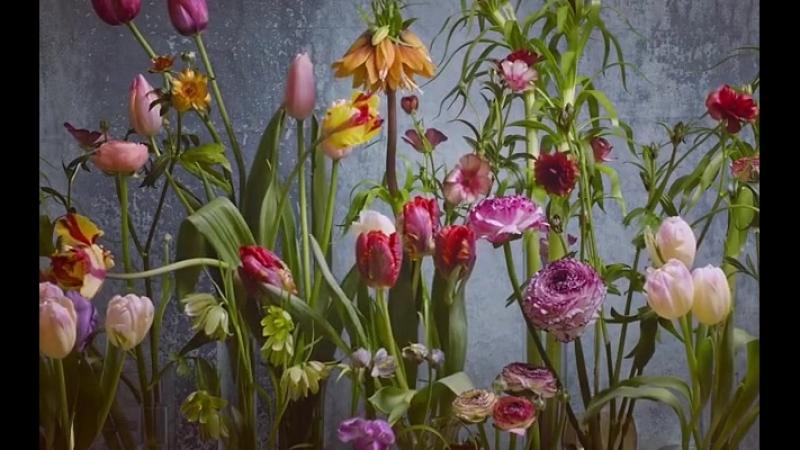 ЖИВЫЕ ЦВЕТЫ в Цветочных Салонах КРОНА