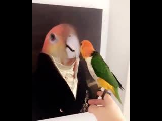 He is a real gentleman