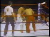 Dennis Alexio vs Don Wilson