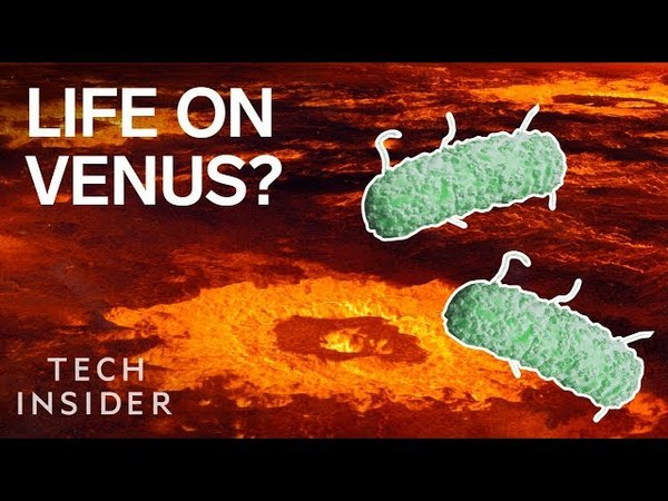 Forget Mars —There Could Be Alien Life On Venus