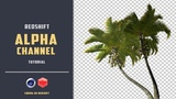 Import textures with alpha channel in REDSHIFT CINEMA4D TUTORIAL