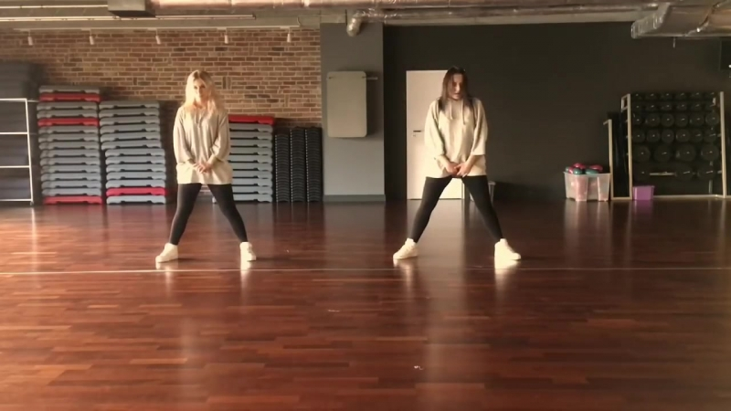 Aron Chupa ft Little Sis Nora- LLAMA IN MY LIVING ROOM- Zumba®