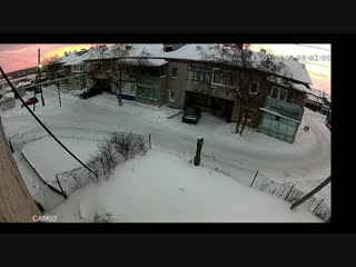 Жители многоквартирного дома в пер. Октябрьский выпроводили незваного гостя