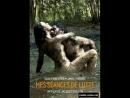 Мои занятия борьбой \ Mes séances de lutte (2013) Франция