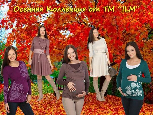 осень ILM 2014