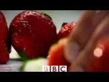 BBC - 10 вещей, которые Вы не знали о потере веса