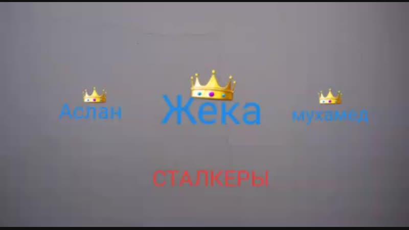 Нас Троя сталкеров