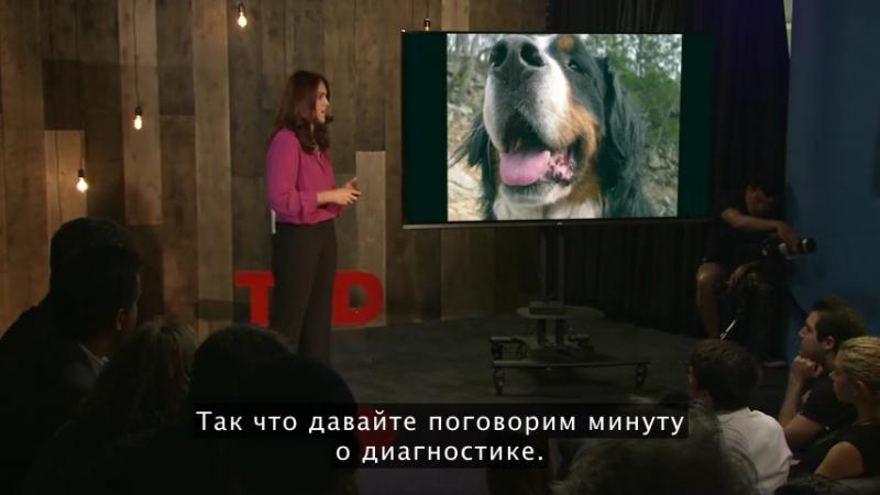 Депрессивные собаки, обсессивные кошки - какое значение для нас имеет психопатология животных? Laurel Braitman