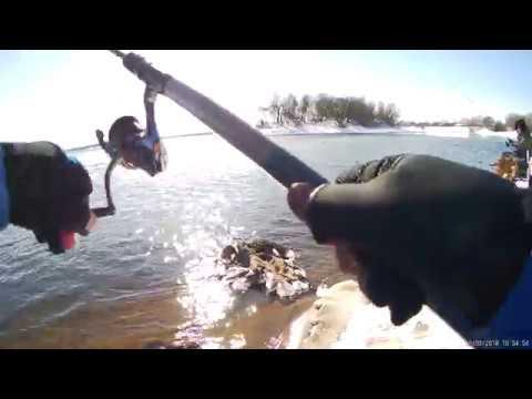 EDim на рыбалку! 3 19 марта 2018 рыбалка на сливе