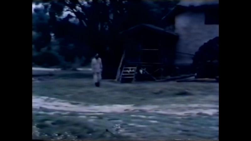 Der Weidenbaum (Sohrab Shahid Saless, 1984)