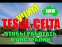 Приезжайте учить TESOL-CELTA в Австралию! [1Australia]1818