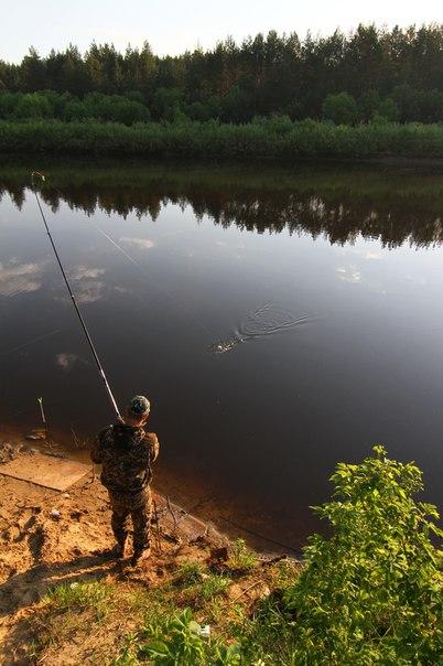 Все на рыбалку