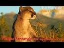 TheHunter Call of The Wild 3/CoTW/Parque Fernando/Новый заказник - взгляд на игру по новому!
