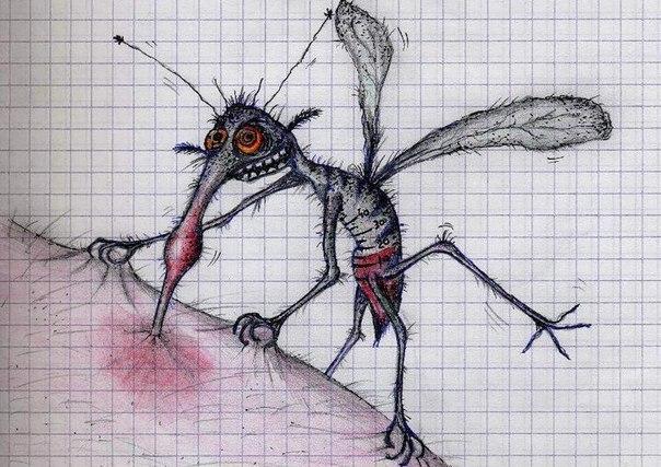 натуральные способы борьбы с комарами полезные советы о том, как избавиться от комаров для тех, кому не вариант дышать химикатами типа раптора и кто стремится к чистоте телесной и духовной. сто граммов камфары, испаряемые над горелкой, избавят от