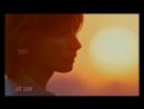 Красивейшая Песня О Любви! Хит На Все Времена! Моя Любимая и Нежная - Владимир А