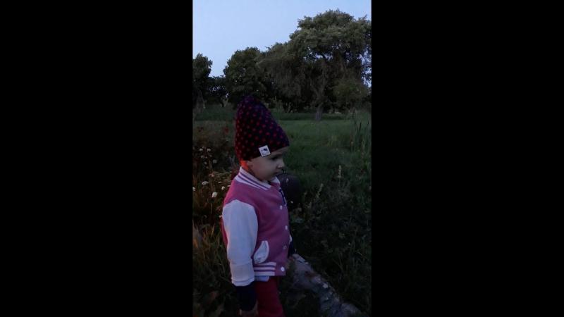 Даша и микрофон