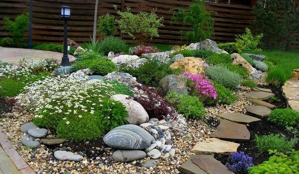 Подбираем растения для альпийской горки. На сегодняшний день понятие альпинарий означает участок, на котором высажены горные растения. Но если говорить об альпийской горке в миниатюре (на