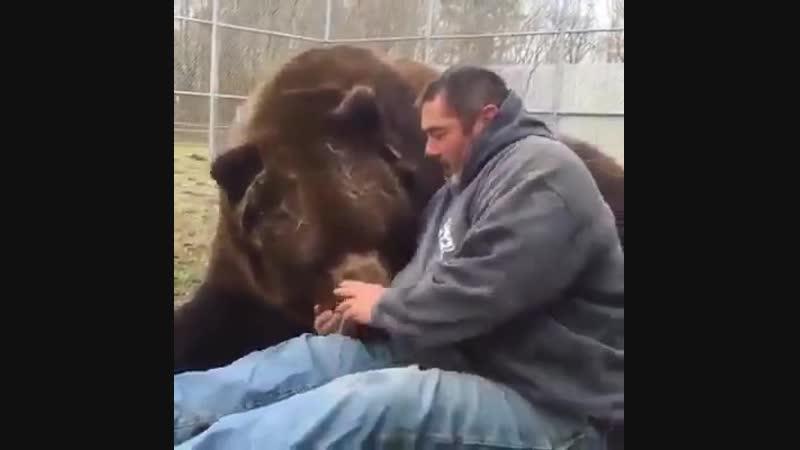 Ковальчик вырастил из раненого детеныша не только 700-килограммового медведя-кадьяка, но и настоящего друга.