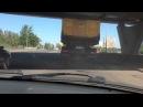 Олень в кузове ударился об мост как в мальчишнике жираф!