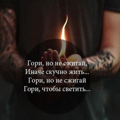 Олег Сипин