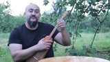 New Circassian apapshin/ ukulele