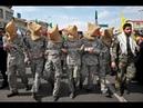 Гробовое молчание западных СМИ В Сирии в плен попал американский и британский спецназ