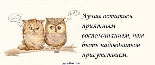 http://cs319919.vk.me/v319919788/94d8/XR6D0ES2TEE.jpg