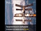 Интересные факты на день Космонавтики