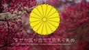 Japanese patriotic song 同期の桜 Sakura bloom Russian translation