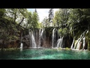 Peaceful Relaxing Instrumental Music: Nature's Songs by Tim Janis