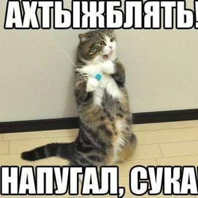 Веталь Литвинчук, 26 декабря , Санкт-Петербург, id206018017