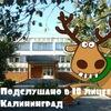 Подслушано в лицее №18 Калининград