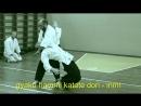 Sinten Ryu Aikijujutsu - irimi aikisinten.spb/