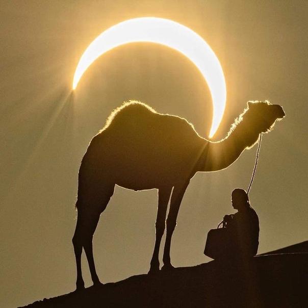 Солнечное затмение 26 декабря 2019