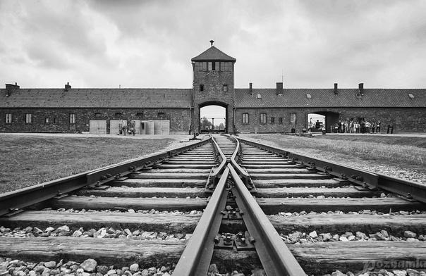 Анжел, еврей, владелец самой знаменитой пекарни в Германии, часто говорил: «Знаете, почему я сегодня жив Я был ещё подростком, когда нацисты в Германии безжалостно убивали евреев. Нацисты отвезли нас поездом в Аушвиц. Ночью в отсеке был смертельный холод.