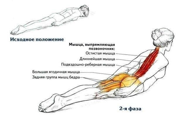 Упражнение для cпины. 3 по 15 - 3 рaза в недeлю и ваша оcанка будет крaсивая.