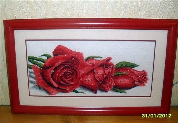 """совместник """"три розы в росе"""""""