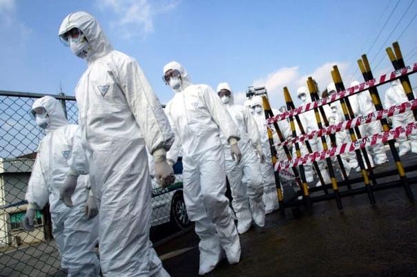 ВИзраиле возобновляют карантин из-за коронавируса. Гражданам запретят отходить...