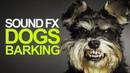 DOG BARKING | Sound Effects [High Quality]