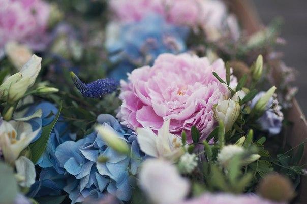 8 августа пройдет флористический мастер класс в студию декора и флористики Либерта! Вас ждет столько вдохновения! Все подробности вы можете узнать у Екатерины(liberta_art)