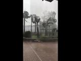 Typhoon Mangkhut • Тайфун Мангхут • 2018.09.16 • 13
