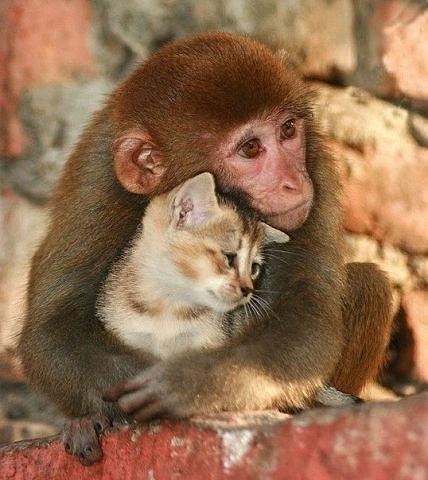 Дай, я тебя обниму!!!