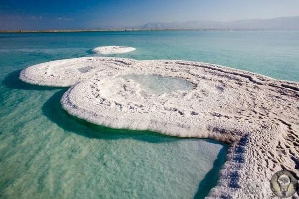 Как могло возникнуть знаменитое Мертвое море. Версия научная и библейская.