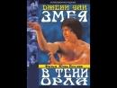 Змея в тени орла [Se ying diu sau, 1978] 720p володарский