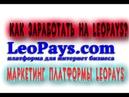 Как заработать на платформе LeoPays? Подробный обзор маркетинга и заработка на LeoPays