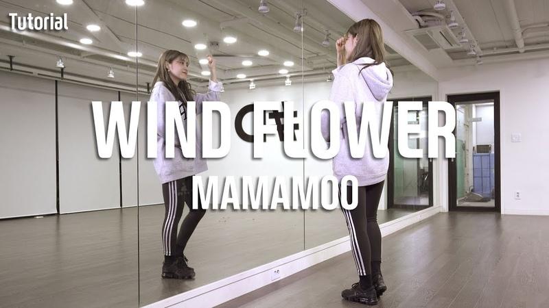 MAMAMOO(마마무)-WIND FLOWER Dance Tutorial Tutorial by Sol-E (Mirror Mode)