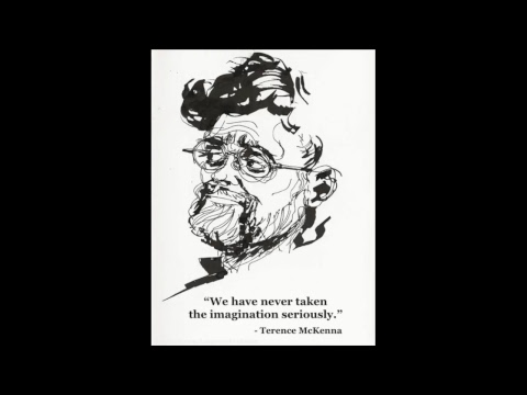 Techno-Pagans At The End Of History - Terence McKenna and Mark Pesce