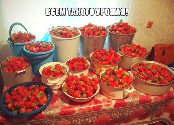 Скоро в България и Сърбия)))))