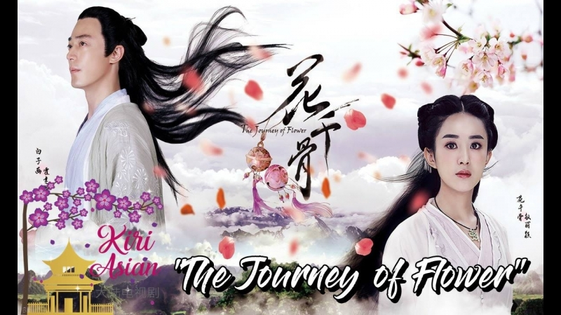 THE JOURNEY OF FLOWER 7
