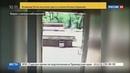 Новости на Россия 24 Украинского радикала срывавшего георгиевские ленточки восемь раз пырнули ножом